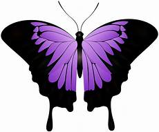clipart pictures purple butterfly decorative transparent image gallery