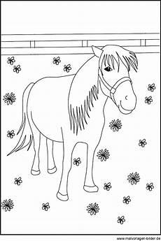 ausmalbilder pferde und ponys malvorlage gratis