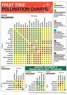 Apple Tree Pollination Chart 2014 Fruit Tree Pollination Chart Be Prepared Self