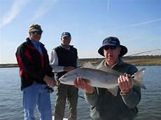 Light Tackle Hilton Head Light Tackle Fishing Light Tackle Spin