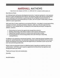 Relationship Manager Cover Letter Cover Letter For Customer Service Director Customer
