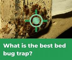 top 5 best bed bug traps 2019 review pestions