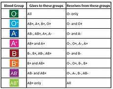 Blood Type Heredity Chart Blood Group And Their Different Type Abo Blood Group