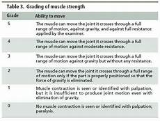 Muscle Symmetry Chart Manual Muscle Testing Grading Scale Muscle Power Muscle
