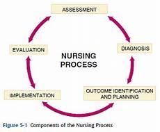 The Concept Of Nursing Process