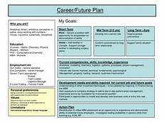 Future Career Plans Statement Career Plan Example