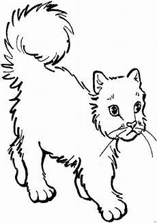 Malvorlage Katzen Kostenlos Malvorlagen Katze