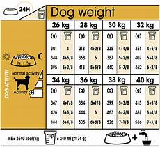 Royal Canin Golden Retriever Puppy Food Feeding Chart Royal Canin Labrador Retriever Breed Health