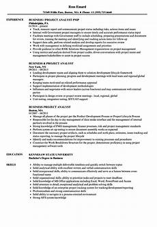 Project Analyst Resume Sample Business Project Analyst Resume Samples Velvet Jobs