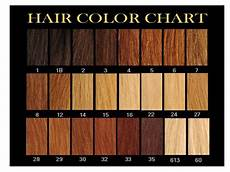 Hair Number Chart Super Power Hair Learn Which Number Is Your Hair Colour