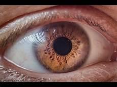 How To Get Light Brown Eyes Fast Get Cinnamon Colored Eyes Fast Biokinesis Subliminal