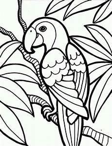 jungle parrot coloring page print