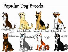 Dog Name Chart Which Breed To Buy Dogspot In