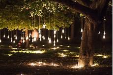 Tree Lights Hanging Tree Lights By Inspirello We It