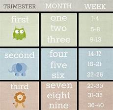 Pregnancy Trimester Weeks Chart My First Trimester Ainna Fathi