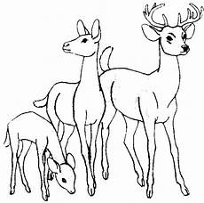 Ausmalbilder Tiere Rehe Gratis Malvorlagen Reh Coloring And Malvorlagan