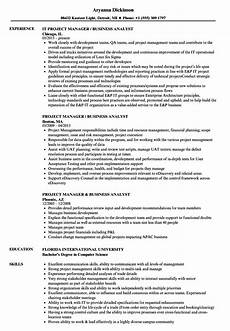 Business Analyst Project Manager Resume Sample Project Manager Business Analyst Resume Samples Velvet