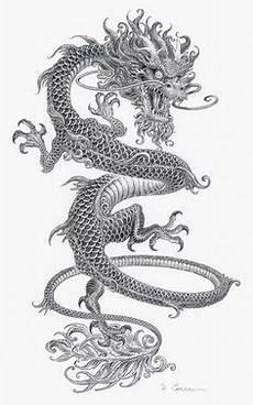 Ausmalbilder Japanische Drachen Http Thumbs Dreamstime Z Chinesischer Drache