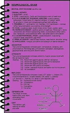 Neurological Exam Neurological Exam Maxwell Quick Medical Reference