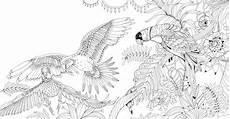 Malvorlagen Urwald Exotischer Urwald Ausmalen Und Entspannen Gu Kreativ