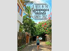 Puerto Ayora, Santa Cruz Island: A Week in the Galapagos