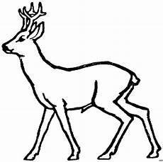 Ausmalbilder Tiere Rehe Schematisches Reh Ausmalbild Malvorlage Tiere