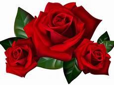 roses png clipart picture hd desktop wallpaper