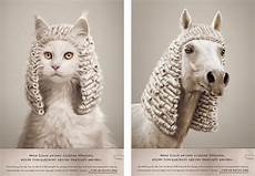 If You Could Be An Animal What Would You Be If Animals Could Judge On Behance