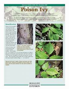 Poison Ivy Identification Prevention Treatment And Control