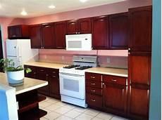 kitchen cabinet stain kit hawk