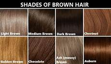 Different Shades Of Brown Hair Colour Chart Hair Color Reference Chart It S Not Perfect But From