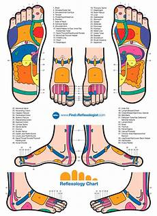 Reflexology Chart Left Foot Reflexology