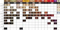Joico Vero K Pak Hair Color Chart Joico Vero K Pak Color Age Defy Swatch Chart Hair In