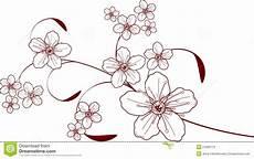 fiori da disegnare disegno fiore di ciliegia illustrazione vettoriale