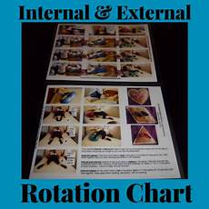 Peanut Ball Chart Peanut Ball Starter Kit Hospital Premier Birth Tools
