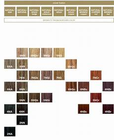 Redken Cover Fusion Color Chart Redken Color Fusion Chart Google Search Hair Color