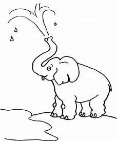 ausmalbilder malvorlagen elefanten kostenlos zum