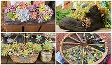 Unique Planters For Succulents 15 Unique And Creative Succulent Planter Ideas Garden
