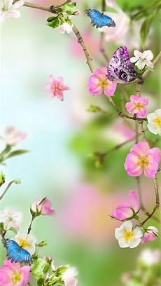 live flower wallpaper for desktop flowers live wallpaper appstore for android