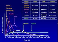 Lantus Peak Times Chart Different Types Of Insulin How They Affect Your Body And