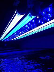 T5 Hybrid Reef Light Show Me Your Diy Led T5 Hybrids Reef2reef Saltwater And
