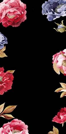 Flower Wallpaper For Home Screen beautiful flower with black background iphone wallpaper