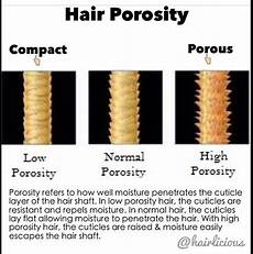 Hair Porosity Chart Transform Your Hair Tuesday Know Your Hair Type And Hair
