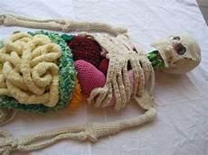 knit art knit anatomical knit