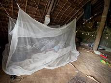 malaria and elimination thinking beyond the bed