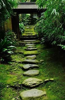 temple neighborhood garden 1000 images about japanese garden on gardens