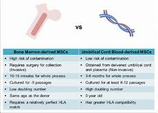 Cord Blood Comparison Chart Comparison Of Bone Marrow Derived Mscs And Cord Blood
