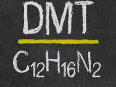 Dmt Effects Dmt Side Effects Facts And Health Risks