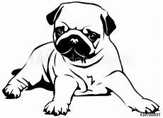quot pug puppy quot stock image and royalty free vector files on