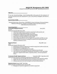 Rn Duties For Resume Resume 2 Before